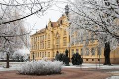 Le bâtiment de lycée parmi le hoar a givré des arbres dans le jour d'hiver froid images libres de droits