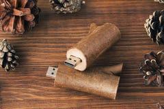 Le bâton en bois créatif d'usb aiment une branche Photo libre de droits