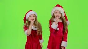 Le bébé de Santa Claus auxiliaire disent tranquillement à leurs elfes Écran vert clips vidéos