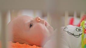 Le bébé doux se trouve sur un dos Image libre de droits