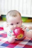 Le bébé garçon mange la pomme Image stock