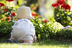 Le bébé garçon rampe sur l'herbe dans le jardin la belle journée de printemps image libre de droits
