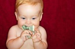 Le bébé mâche des dollars Photos libres de droits
