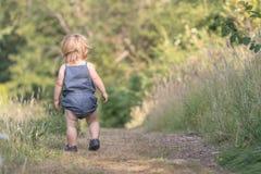 Le bébé marche loin sur le chemin forestier vert Photo stock