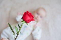 Le bébé mignon tenant un bouquet des fleurs s'est levé Image stock
