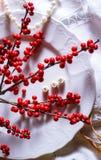 le bacche rosse esprime l'autunno di stagione del piatto del ramo dell'alfabeto fotografia stock libera da diritti