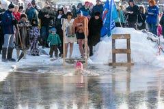 Le bain dans l'eau glaciale, le 24 janvier 2016 Images libres de droits