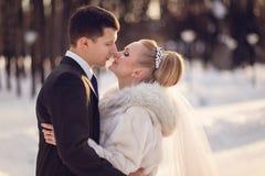 Le baiser de jeunes mariés dans la forêt d'hiver Photos libres de droits