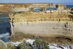 Le balénoptère, grande route d'océan Images libres de droits