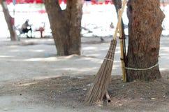 Le balai de noix de coco l'a mis sur l'arbre près du secteur de plage images stock