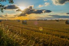 le balle della paglia in un campo al tramonto con la lente si svasano dal sole Immagini Stock Libere da Diritti