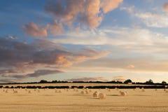 Le balle di fieno della Norfolk che prendono il sole nel tramonto emettono luce Immagini Stock