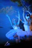 Le ballet d'état de St Petersburg sur la glace - lac swan Photos libres de droits