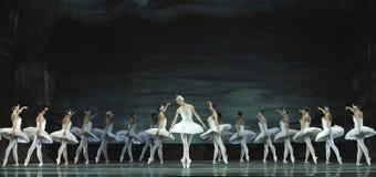le ballet de lac de cygne a exécuté par le ballet royal russe Images stock