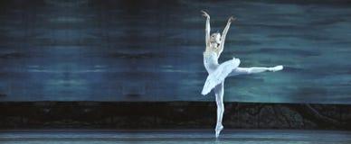 Le ballet de lac swan a exécuté par le ballet royal russe Images libres de droits