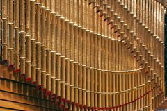 Le bambou en bronze de tuyaux a formé images libres de droits
