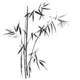 Le bambou s'embranche peinture Illustration Libre de Droits