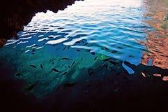 Le banc de poissons dans l'eau claire d'une grotte dans Palaiokastritsa, orfu de ¡ de Ð, Grèce Photo libre de droits