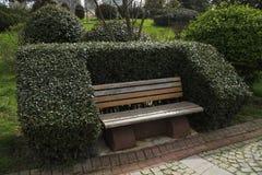 Le banc en bois avec les buis formés ressemble au sofa Photographie stock libre de droits