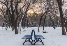 Le banc en parc en hiver Photographie stock
