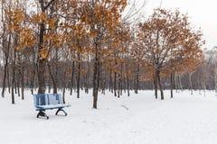 Le banc en parc en hiver Photographie stock libre de droits