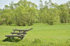 Le banc vide sur une herbe verte Photos libres de droits