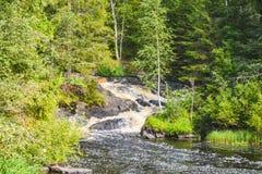 Le banche invase del fiume Tohmayoki, Carelia, Russia fotografie stock