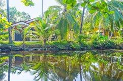 Le banche ombreggiate del canale del ` s di Hamilton, Sri Lanka fotografie stock