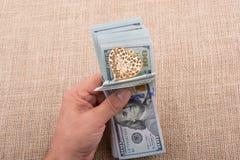 Le banconote del dollaro con un cuore tagliano su una corda Fotografia Stock