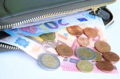 Le banconote e le monete europee hanno sparso dal portafoglio Fotografie Stock