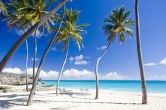 Le Barbados Immagine Stock