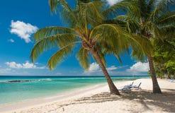 Le Barbados Fotografie Stock Libere da Diritti