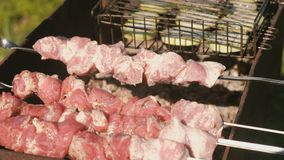 Le barbecue de porc sur des brochettes et les tranches de courgette sur le charbon de bois grillent Vue de plan rapproché clips vidéos