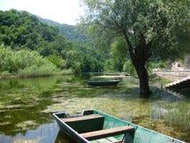 Le barche di legno sul fiume nel Montenegro immagazzinano l'immagine Fotografia Stock Libera da Diritti