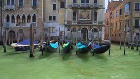 Le barche tradizionali di Venezia hanno attraccato alle colonne di legno, Grand Canal, facente un giro turistico archivi video