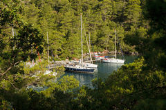 Le barche a vela hanno attraccato nella baia di Sarsala, Gocek. Fotografie Stock Libere da Diritti