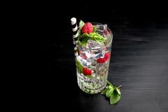 Le barman à la mode tonique d'hôtel de genièvre de barre d'alcool de cocktail garnissent image stock
