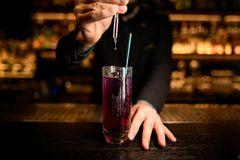 Le barman utilise le compte-gouttes pour faire un cocktail photos libres de droits