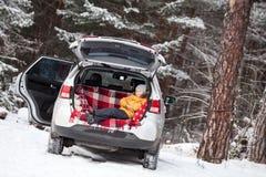 Le barnet som lägger insidan av bilbaksidakängan för bagage Sörjer vintergröna skogar för vinter med täckt enorm snö Arkivbild
