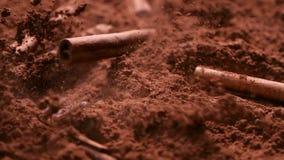 Le barre della cannella cadono in cacao in polvere - fine su stock footage
