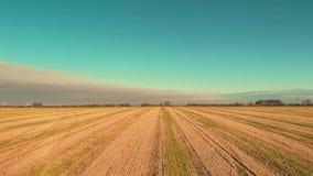 Le bas aérien de vol de bourdon vers le bas au-dessus d'a de lever de soleil au-dessus d'un champ de blé coupé freshy - été 2018 banque de vidéos