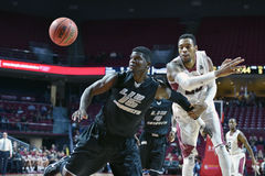 2014 le basket-ball des hommes de NCAA - TEMPLE contre LIU Photos libres de droits