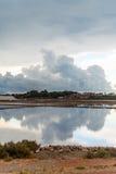 le bassin artificiel appelé a couvert l'île Italie de segments de mémoire sa terre cuite remarquable rectangulaire trapani de la  images stock
