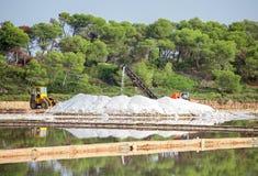 le bassin artificiel appelé a couvert l'île Italie de segments de mémoire sa terre cuite remarquable rectangulaire trapani de la  image libre de droits