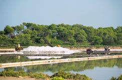 le bassin artificiel appelé a couvert l'île Italie de segments de mémoire sa terre cuite remarquable rectangulaire trapani de la  photo libre de droits