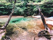 Le bassin dans le parc d'état d'entaille de Franconia images stock