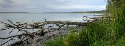 Le bassin de St George de la baie proche de l'abondance, parc national de Boodero, Jervis Bay, ACTE, Australie image stock