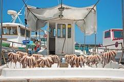 Le bateau dans le port après la pêche réussie Images stock