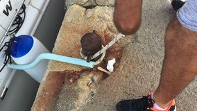 Le bateau de mer amarrent à la jetée La fin vers le haut de la vue au bitt de borne et à la fabrication de noeud de mer équipe la banque de vidéos