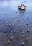 Le bateau de pêche a amarré dans une crique avec des mouettes Photographie stock